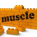 to build muscle 150x150 Get Your Body Healthy By Lifting Weights